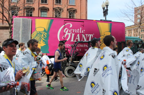 Gentle Giant Reacts to the 2013 Boston Marathon Tragedy