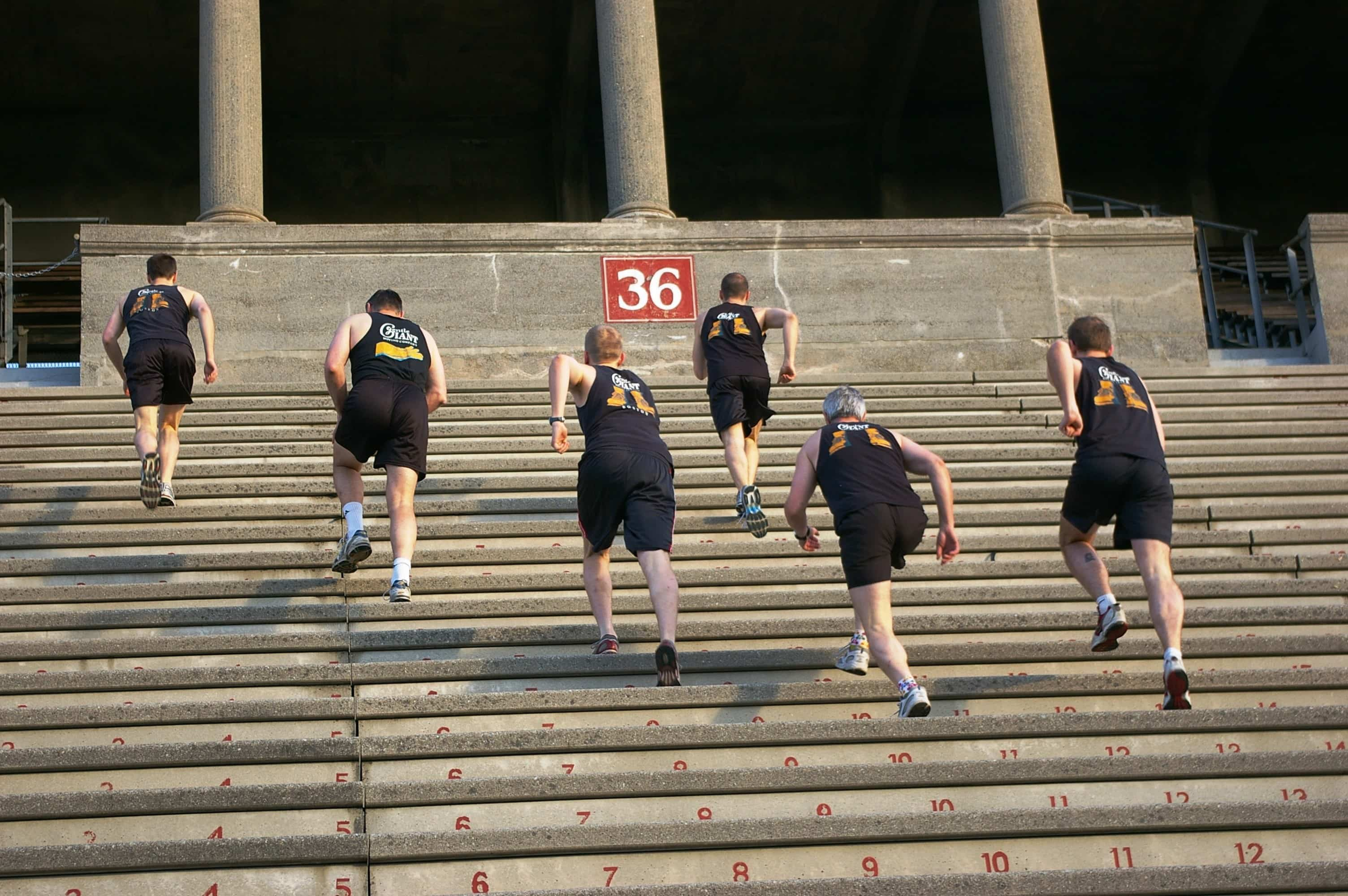 An Ode to Harvard Stadium